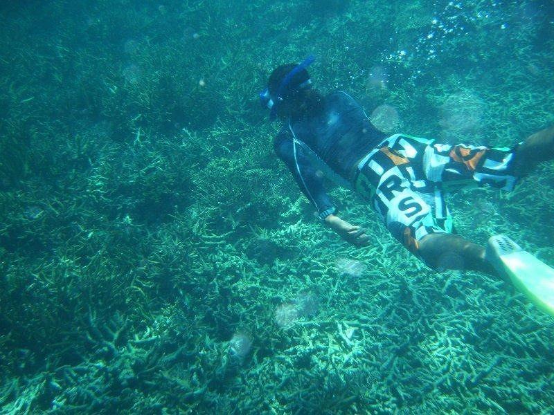 Snorkling Pulau Tioman