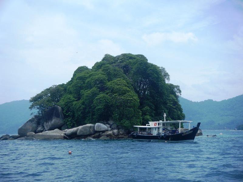 Diving Pulau Tioman - Pulau Tioman
