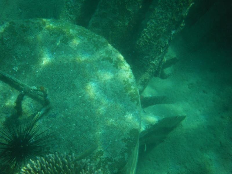 Diving Pulau Tioman