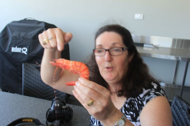 al2401 and aussirose love fresh prawns Cooktown QLD - Cairns