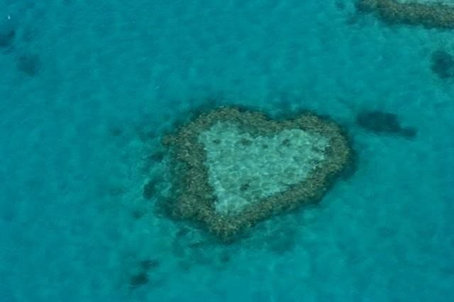 Heart Reef Whitsundays - Hamilton Island
