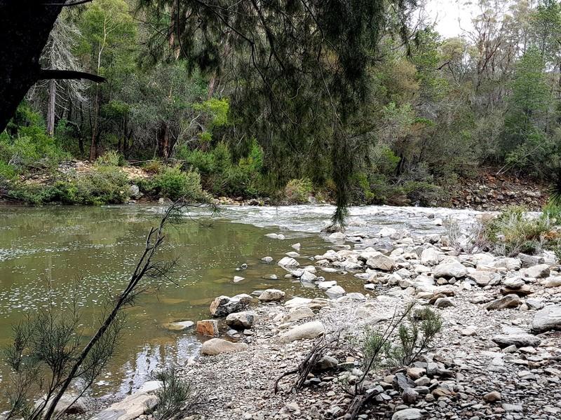 Bicheno - Apsley NP creek