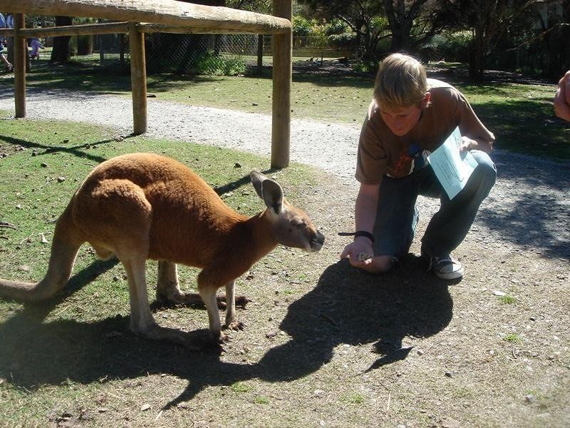 Perth Caversham Wildlife Park