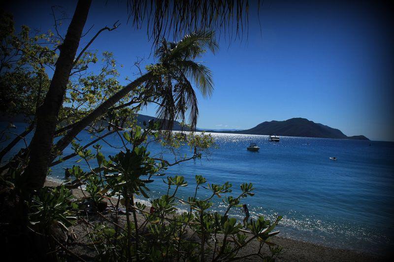 aussirose enjoys sun glistening on water Fitzroy - Cairns