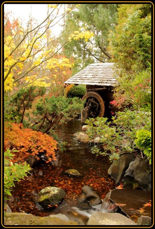 Hobart - Botanical  35
