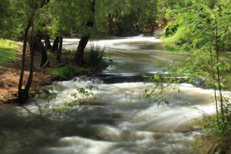 T7 - BVE - creek 2