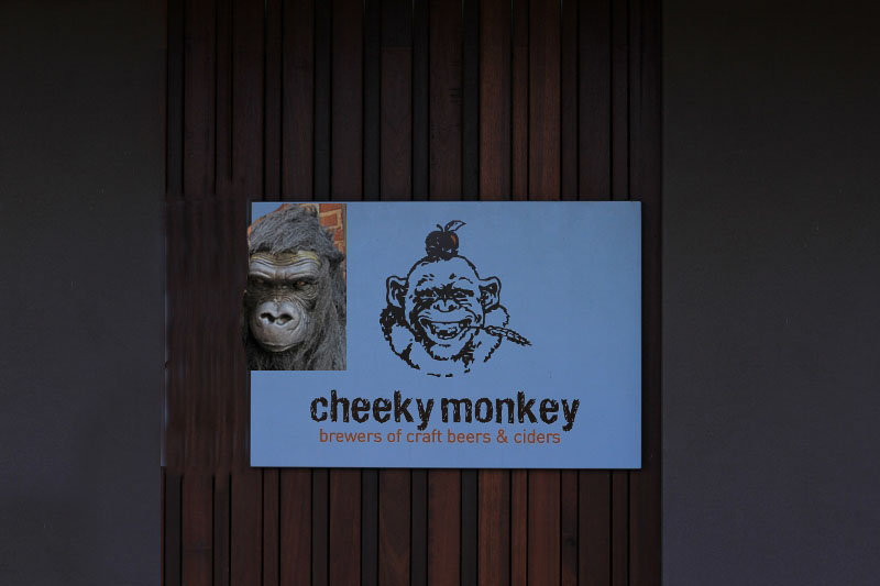 T8 - Cheeky Monkey