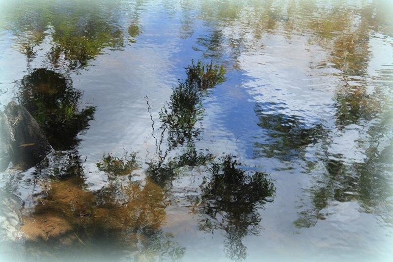Cooktown - Little Annon River