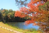 Chilhowee Recreation Area Ocoee