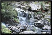 Pyengana St Columba Falls - 9