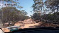 aussirose WA outback looking for Yellowdine Lake - Yellowdine