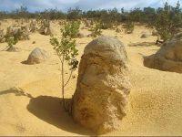 Mountain rock Pinnacles - Cervantes