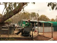 Howie relaxes at Boshack Toodyay by aussirose - Toodyay