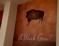 Launceston - Black Cow inside