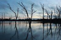 Reflection Photography by aussirose at Boshack WA - Toodyay