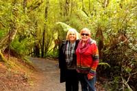 Pyengana St Columba Falls - Nancy Ann