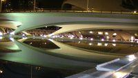 City of Sciences Valencia at night by aussirose - Valencia