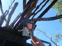 diosh & shohman collecting firewood - NT Australia - Northern Territory