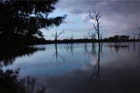 Stay at Boshack - A Photographers Paradise - Toodyay