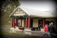 Pyengana - Pub in the Paddock