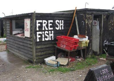 288872744800413-Fish_shop_on..ast_Sussex.jpg