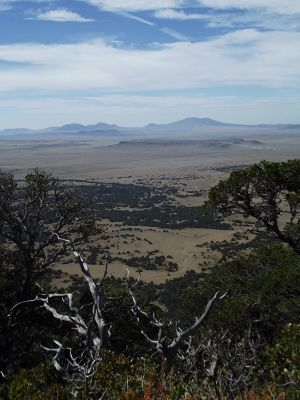 5923621-View_from_Rim_Trail_Capulin.jpg