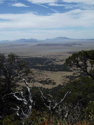 5923621-View_from_Rim_Trail_Capulin.jpg