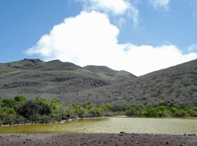 6461849-The_saltwater_lagoon_Isla_Rabida.jpg