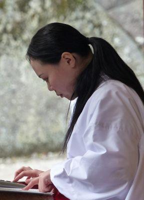 668618586941775-Toshogu_Shri..tion_Nikko.jpg