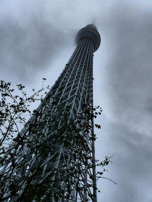 6888253-Sky_Tree_Tokyo.jpg