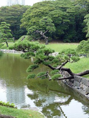 6888263-Hama_Rikyu_Gardens_Tokyo.jpg