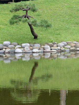 6888272-Hama_Rikyu_Gardens_Tokyo.jpg