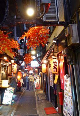 6888315-Omoide_Yokocho_Tokyo.jpg
