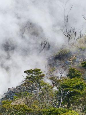 6892897-Owakudani_Hot_Springs_Hakone.jpg