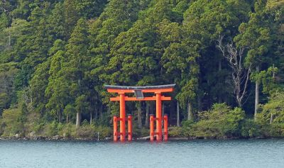 6892913-Shrine_seen_from_the_path_Hakone.jpg