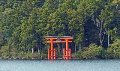 6892913-Shrine_seen_from_the_path_Hakone.jpg