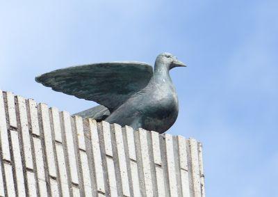 6909883-Detail_of_a_dove_Hiroshima.jpg