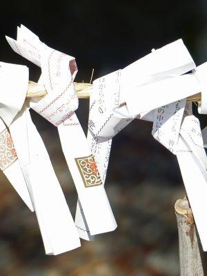 6927669-For_good_fortune_Takayama.jpg