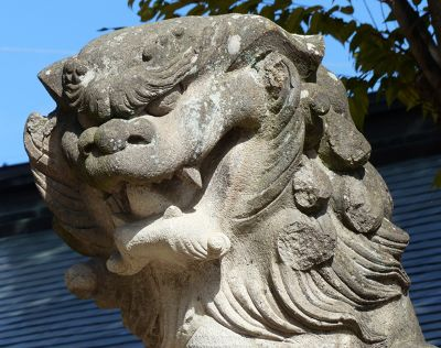 6935494-Lion_dog_guardian_Matsumoto.jpg