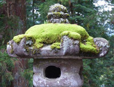 6941671-Stone_lantern_Nikko.jpg