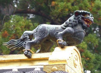 6941762-Tsutsuga_Nikko.jpg