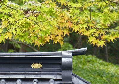 6941788-Futarasan_Shrine_Nikko.jpg