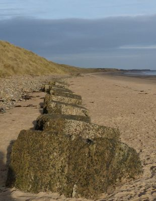 7287024-Wartime_defences_Druridge_Bay.jpg