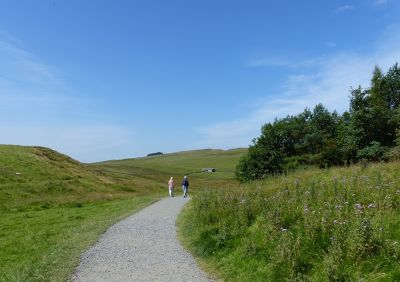7464337-The_start_of_the_path_Housesteads.jpg