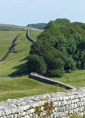 7464902-From_Housesteads_Northumberland.jpg