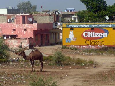 7516384-Return_to_Delhi_Delhi.jpg