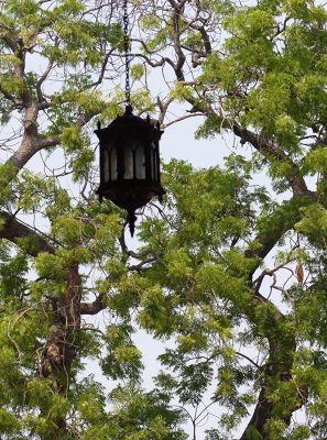 7524283-Above_the_Amar_Singh_Gate_Agra.jpg