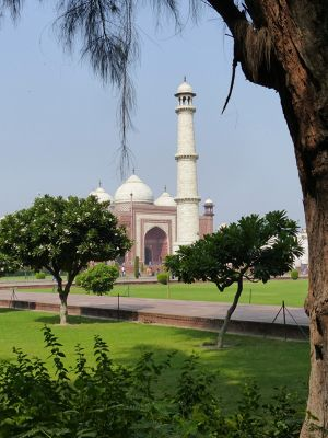 7524287-Mosque_seen_from_the_gardens_Agra.jpg