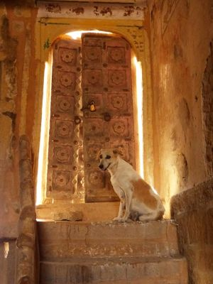 7536640-Such_lovely_doors_Jaisalmer.jpg