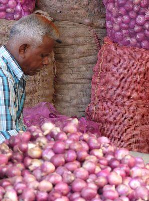 7541847-Shallots_shop_Jodhpur.jpg